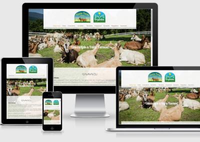 Fülöp Farm mobil telefonokra optimalizált weboldal készítés
