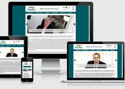 Könyvelj itt mobilra optimalizált weboldal készítés