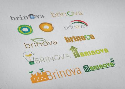 brinova_logo