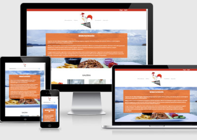 zalabrojler_netDesign_website